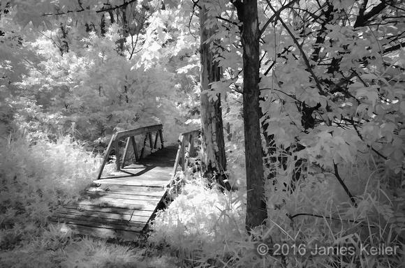 IR Kinawa Woods 2