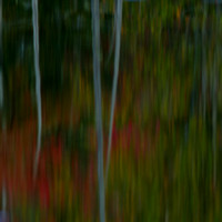 Fall Colors - Abstract 2